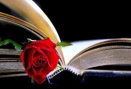 Rose und Buch_1